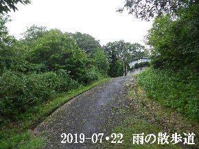 2019-07・22 今日の散歩道・・・ (4).JPG