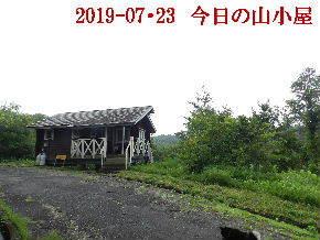 2019-07・23 今日の里山模様・・・ (2).JPG