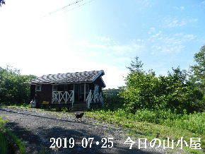 2019-07・25 今日の里山模様・・・ (2).JPG