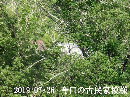 2019-07・26 今日の古民家模様.JPG