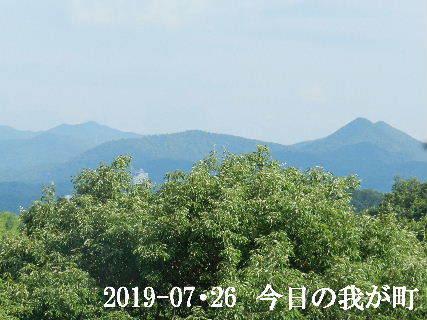 2019-07・26 今日の我が町.JPG