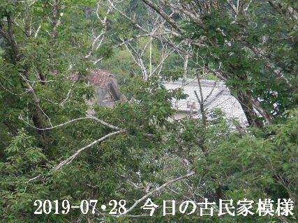 2019-07・28 今日の古民家模様.JPG