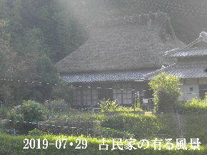 2019-07・29 今日の古民家模様・・・ (2).JPG