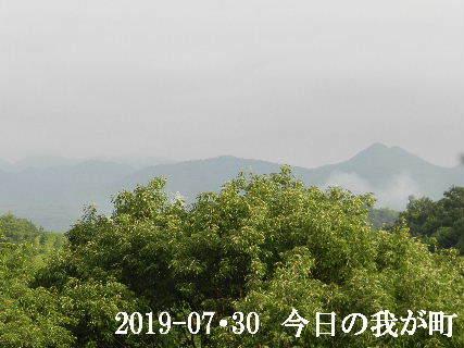2019-07・30 今日の我が町.JPG