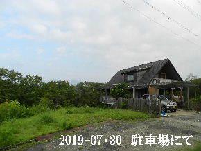 2019-07・30 今日の里山模様・・・ (1).JPG