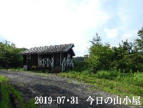 2019-07・31 今日の里山模様・・・ (2).JPG
