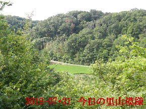2019-07・31 今日の里山模様・・・ (4).JPG
