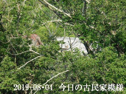 2019-08・04 今日の古民家模様.JPG