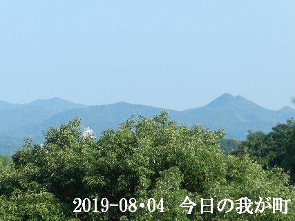 2019-08・04 今日の我が町.JPG