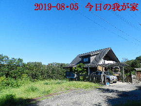 2019-08・05 今日の里山模様・・・ (1).JPG