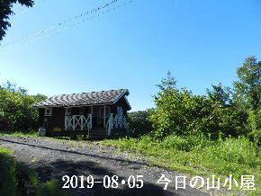 2019-08・05 今日の里山模様・・・ (2).JPG