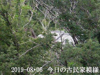 2019-08・06 今日の古民家模様.JPG