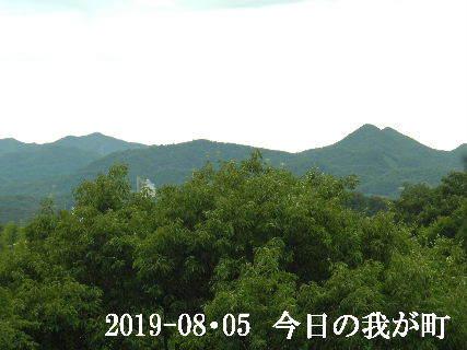 2019-08・06 今日の我が町.JPG