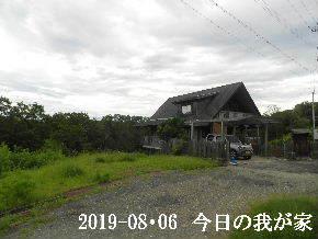 2019-08・06 今日の里山模様・・・ (1).JPG