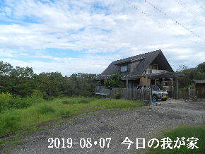 2019-08・07 今日の里山模様・・・ (1).JPG