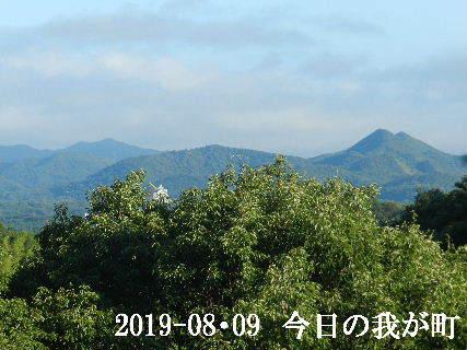 2019-08・09 今日の我が町.JPG