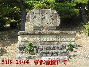 2019-08・09 我が家の墓地公園で (2).JPG