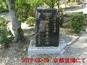 2019-08・09 我が家の墓地公園で (3).JPG