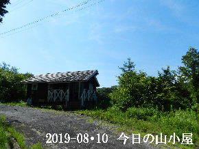 2019-08・10 今日の里山模様・・・ (2).JPG