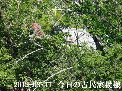 2019-08・11 今日の古民家模様.JPG
