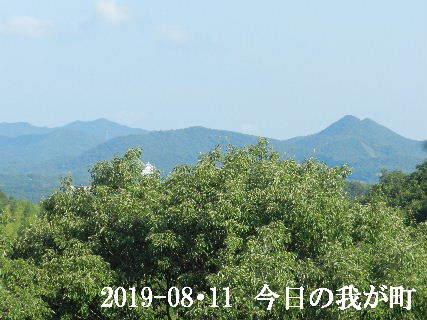 2019-08・11 今日の我が町.JPG