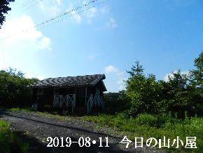 2019-08・11 今日の里山模様・・・ (2).JPG