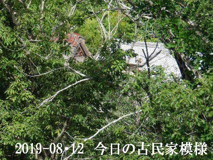 2019-08・12 今日の古民家模様.JPG
