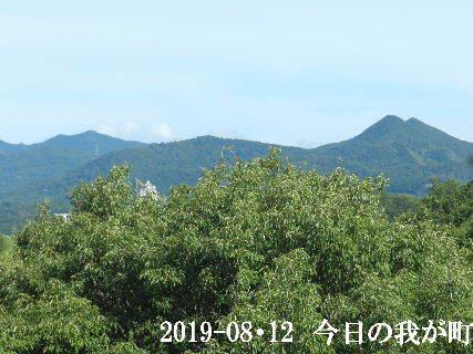 2019-08・12 今日の我が町.JPG