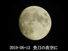 2019-08・13 葉月の夜空に・・・ (1).JPG
