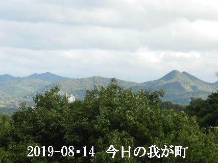 2019-08・14 今日の我が町.JPG