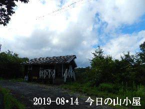 2019-08・14 今日の里山模様・・・ (2).JPG