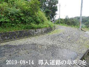 2019-08・14 我が家のスナップ・・・ (1).JPG