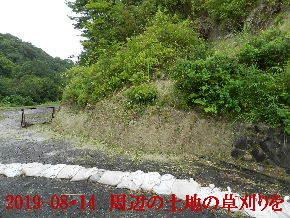 2019-08・14 我が家のスナップ・・・ (3).JPG