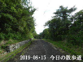 2019-08・15 今日の散歩道・・・ (1).JPG