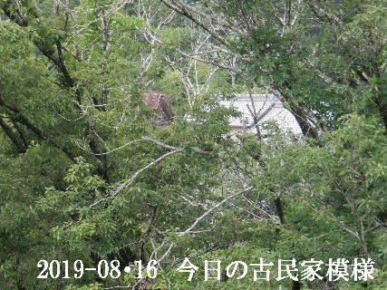 2019-08・16 今日の古民家模様.JPG