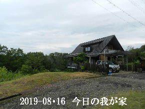 2019-08・16 今日の里山模様・・・ (1).JPG