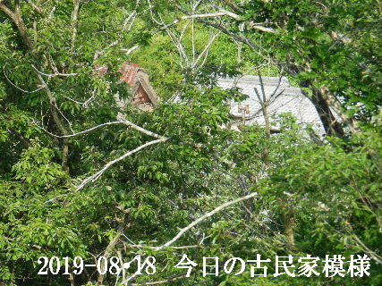 2019-08・18 今日の古民家模様.JPG