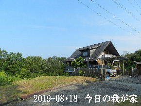 2019-08・18 今日の里山模様・・・ (1).JPG