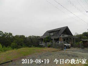 2019-08・19 今日の里山模様・・・ (1).JPG
