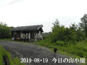 2019-08・19 今日の里山模様・・・ (2).JPG