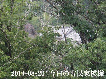 2019-08・20 今日の古民家模様.JPG