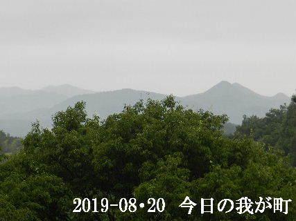 2019-08・20 今日の我が町.JPG