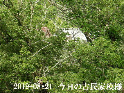 2019-08・21 今日の古民家模様.JPG