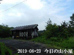 2019-08・23 今日の里山模様・・・ (2).JPG