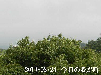 2019-08・24 今日の我が町.JPG