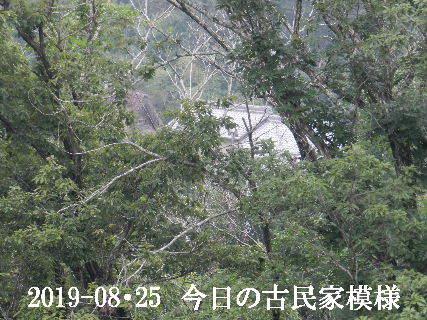 2019-08・25 今日の古民家模様.JPG