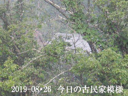 2019-08・26 今日の古民家模様.JPG