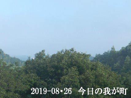 2019-08・26 今日の我が町.JPG
