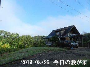 2019-08・26 今日の里山模様・・・ (1).JPG