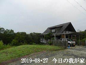 2019-08・27 今日の里山模様・・・ (1).JPG